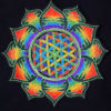 Flower of Life Spiral Embroidered Patch
